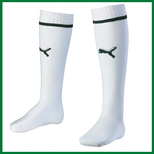 New Hibernian Top 2013 Socks