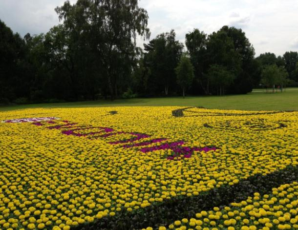 Dortmund Flowers New Kit Image 2013 2014