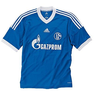 Schalke Kit 2013
