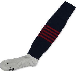 BRFC Socks