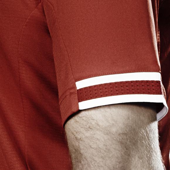 LFC Sleeve 2013