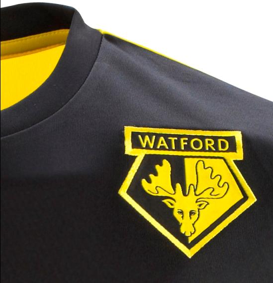 Watford Crest 2013