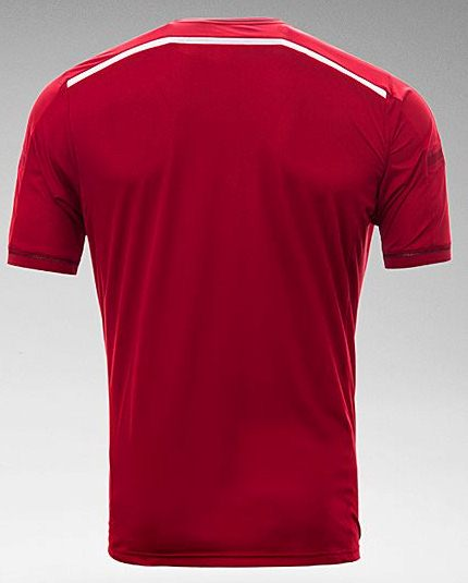 Danish 2014 Football Shirt