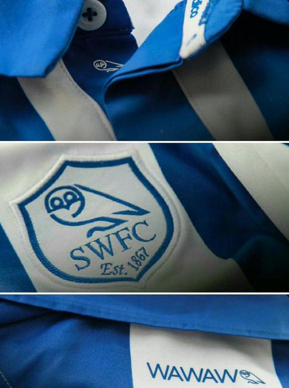 Swfc Shirt 15 16 Closeup
