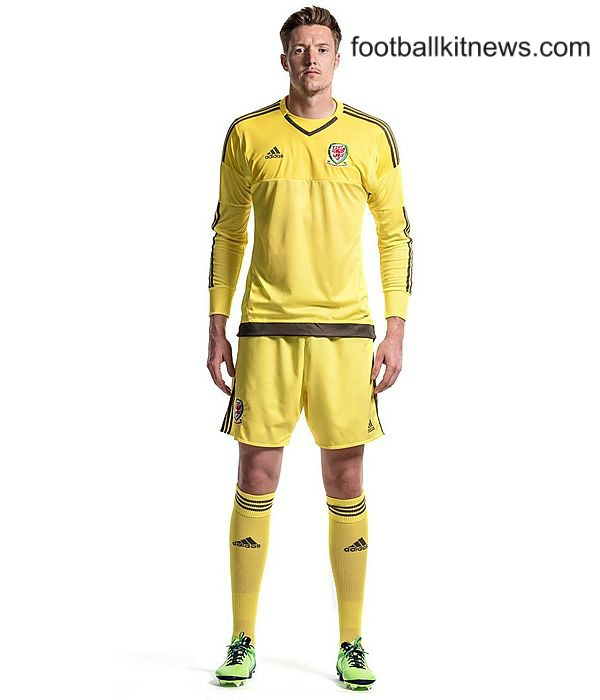 Wales Goalkeeper Jersey Euro 2016