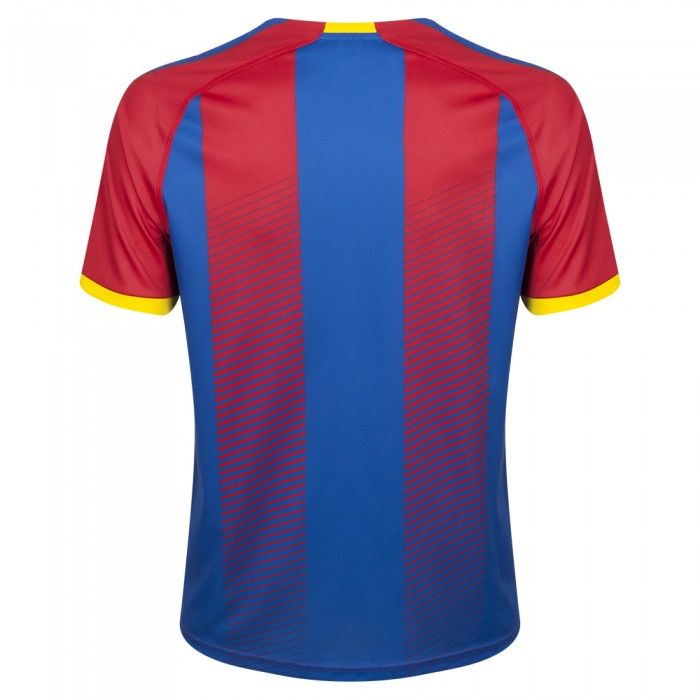 Back of Crystal Palace Home Shirt 18 19