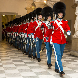 Danish Life Guards