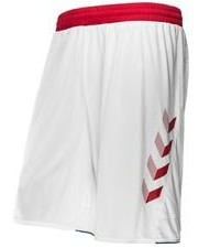 Denmark Home Shorts