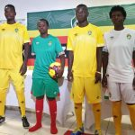 New Zimbabwe AFCON Kits 2019- Warriors Umbro Jerseys 2019-20